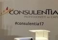 consulentia.png
